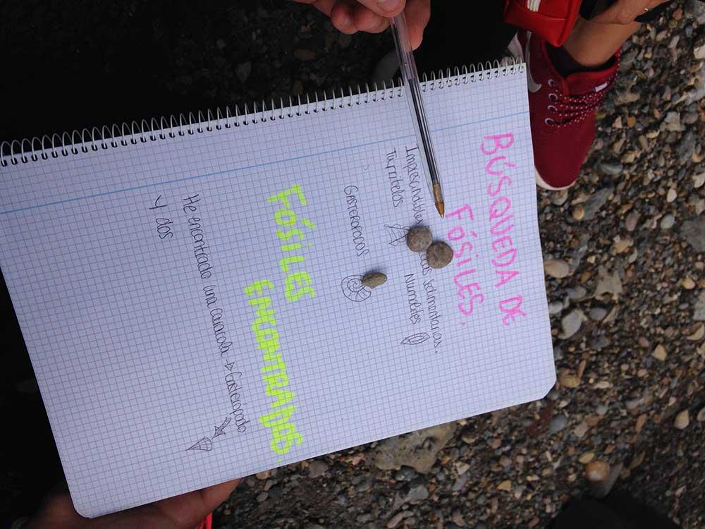 Cuaderno-Campo-Geologia-Geoparque-Sobrarbe-Bachiller